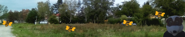 Bienenwald Weiwasser